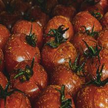 Tomates cerises rôties